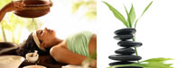 Rejuvenation & Wellness Packages